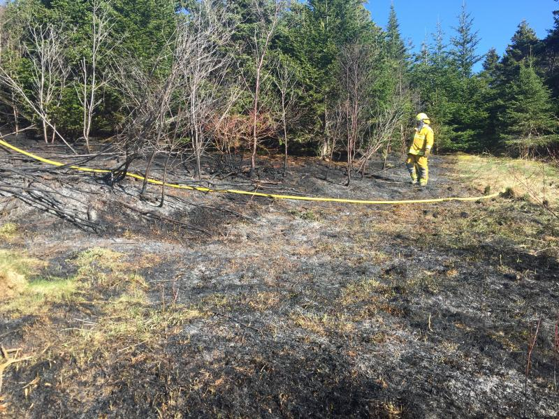Forest Fire Chapel Arm May 2016