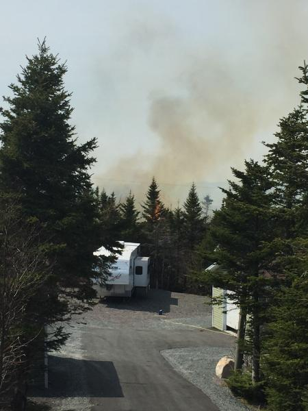 Forest Fire Fair Haven May 2016